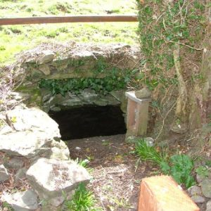 St. Patrick's Well, Kilashee, Naas 17th March 2011